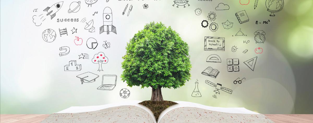 Baum wächst aus Buch, umgeben von Symbolen