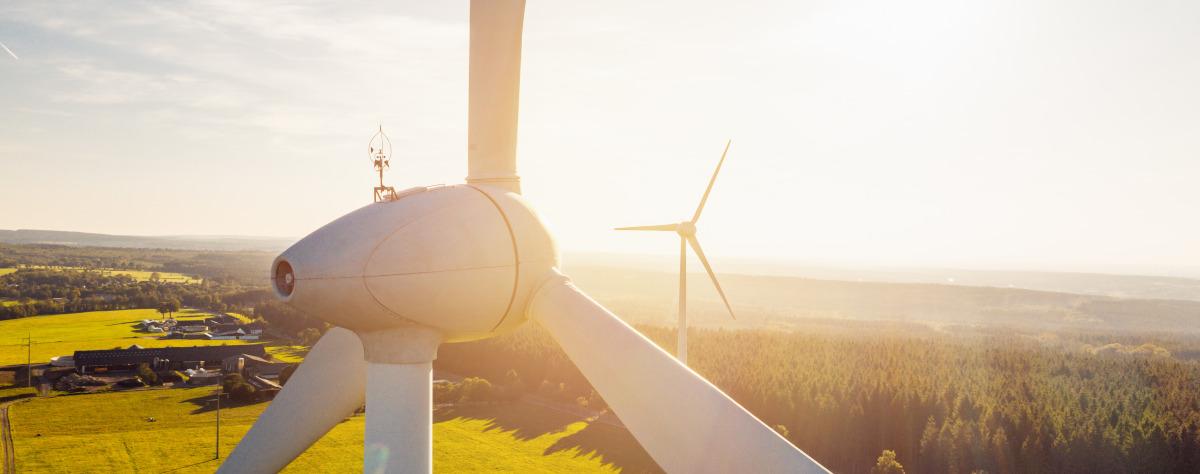 Blick aus der Luft auf Windenergieanlagen