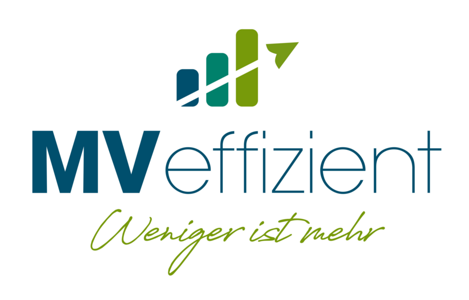 Logo MVeffizent